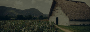 Cuba - Vinales -