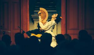 Flamenco, esercizi di stile.