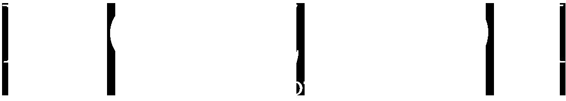 www.lucazizioli.com Logo
